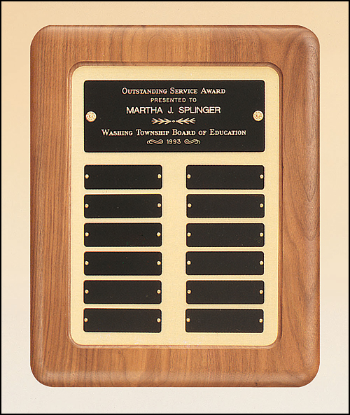 "Multi Activity Annual Plaque 14 Year Presentation Award 8 x 10/"" FREE Engraving"